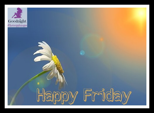 # 3+Day of the week Wishes Beautiful Images