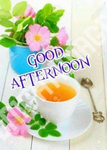 Good Afternoon4