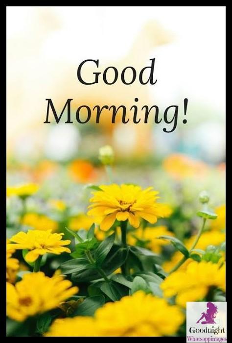 goodmorning21