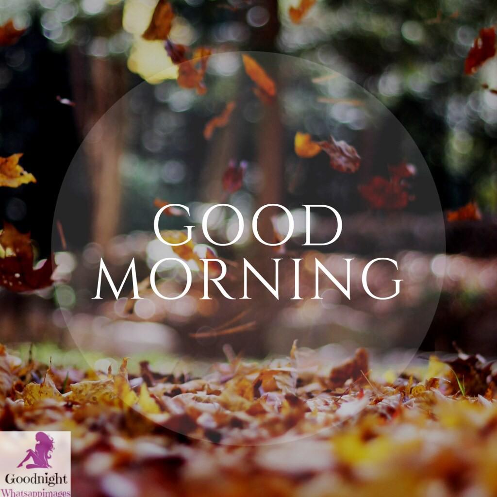 goodmorning42