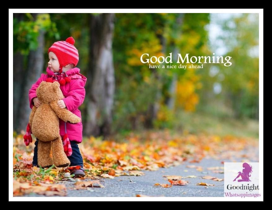 goodmorning43