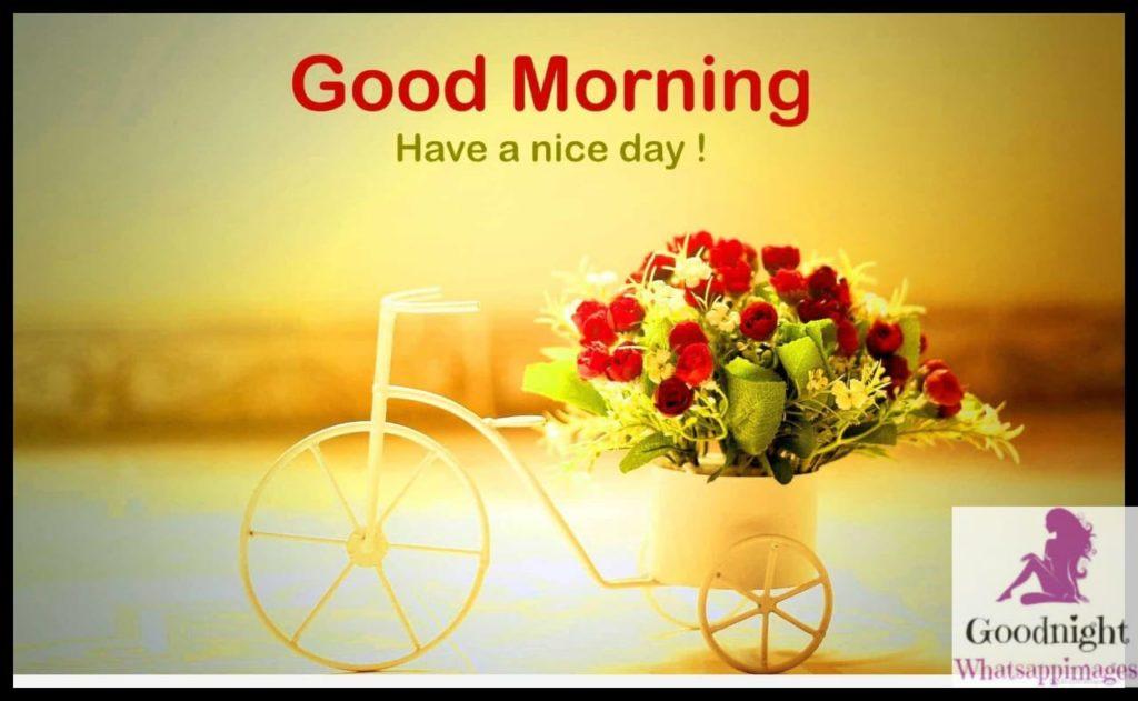 goodmorning44