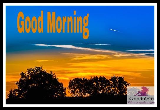 goodmorning48