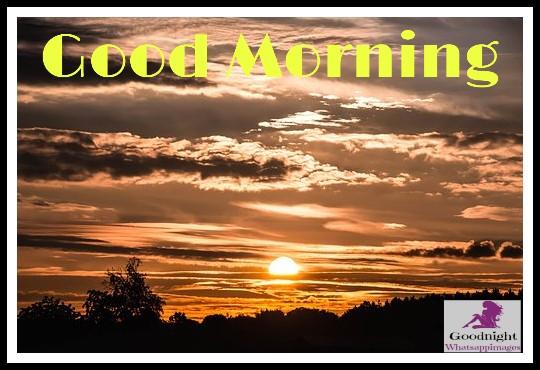 goodmorning49
