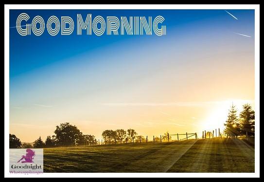 goodmorning50