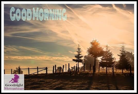 goodmorning52