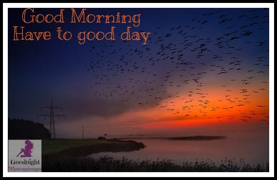 goodmorning55