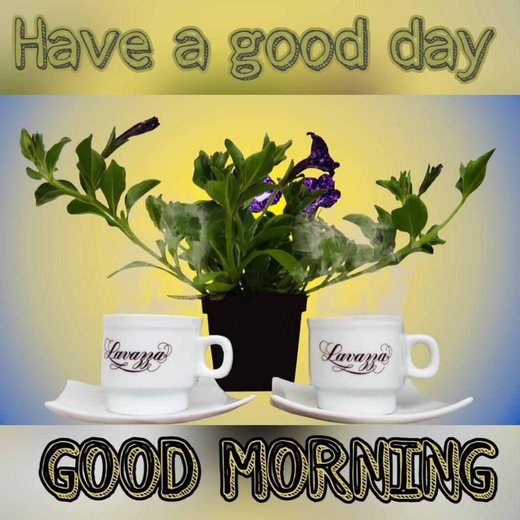 goodmorning87