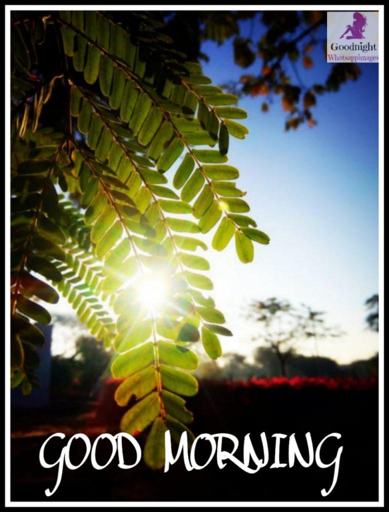 goodmorning89