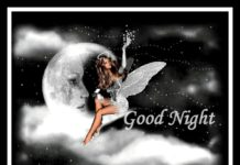 Good-Night-Good-Night-Images-Good-Night-Wallpaper-HD Download-Good-Night-Photo-for-Whatsapp-Facebook-New-best-Good-Night