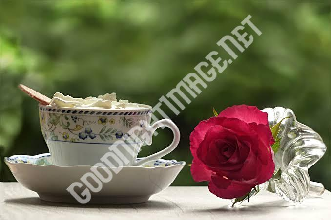 Beautiful Coffee Cup Images with rose1