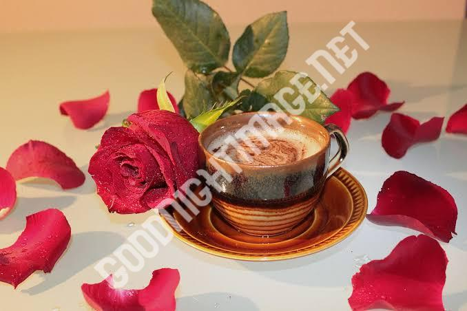 Beautiful Coffee Cup Images with rose7