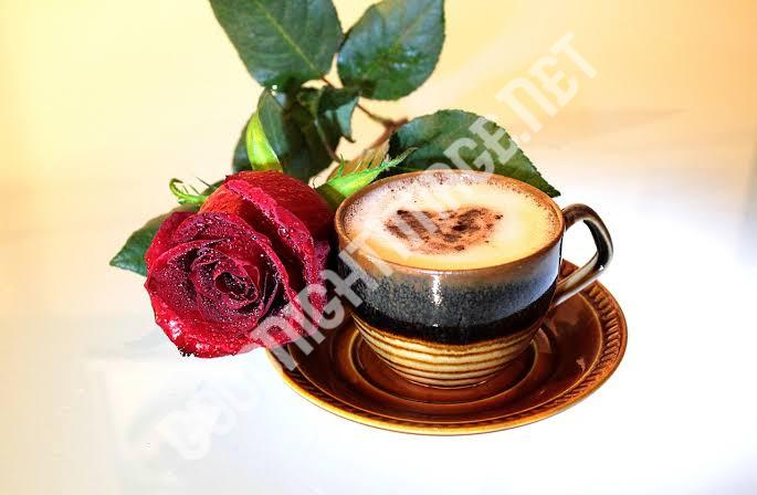 Beautiful Coffee Cup Images with rose8