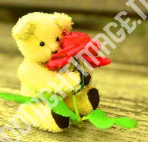 Cute Sad Funny Romantic Lover27