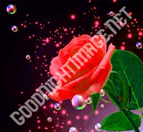 Cute Sad Funny Romantic Lover44