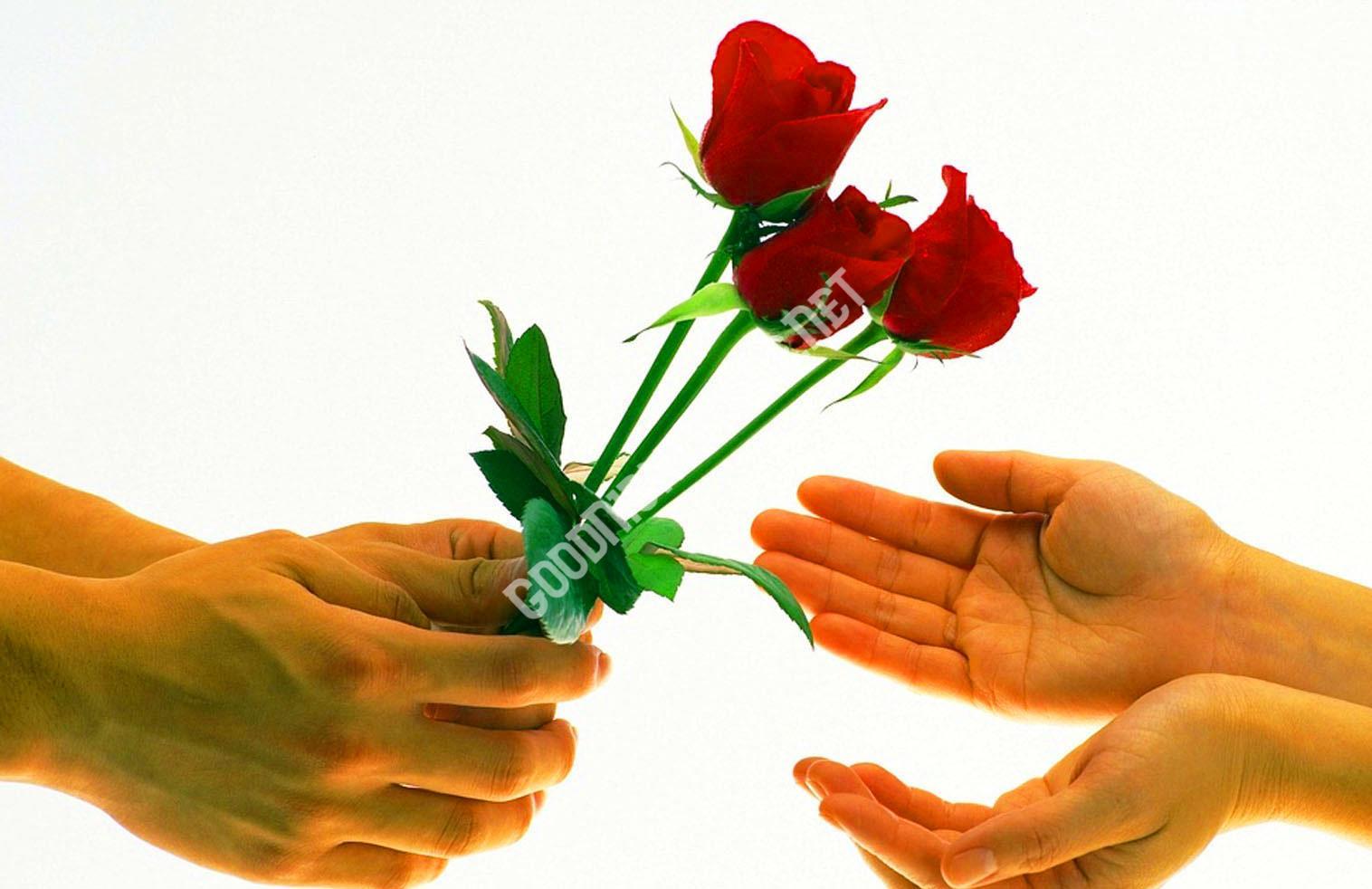 Cute Sad Funny Romantic Lover74