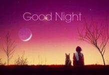Lovely Good Night Images11