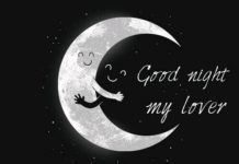 Lovely Good Night Images13