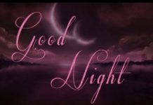 Lovely Good Night Images20