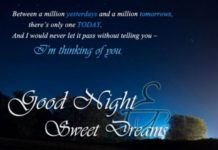 Lovely Good Night Images22