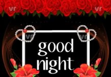 Lovely Good Night Images29