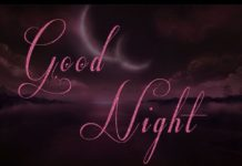 Lovely Good Night Images39
