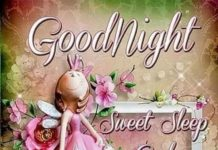 Lovely Good Night Images7