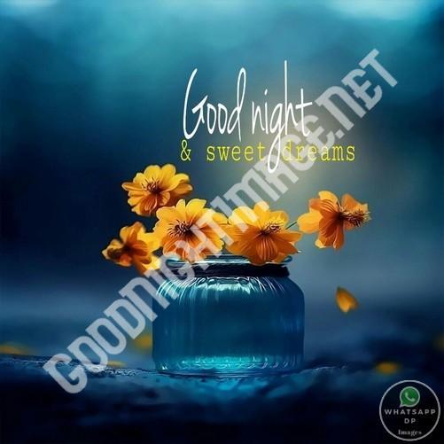 Good Night Messages Good Night Image Good Night Wishes Good Night Pic Good Night Sweet Dreams Good Night Photos Good Night Image Shayari 17