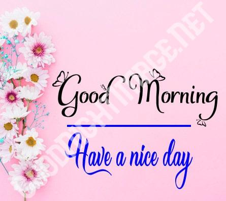 Best Free Beautiful Good Morning HD Images Download
