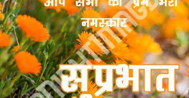 499+ गुड मॉर्निंग फोटो वॉलपेपर डाउनलोड इन हिंदी (Good Morning Wallpaper In Hindi ) - Good Morning Images | Good Morning Photo HD Downlaod | Good Morning Pics Wallpaper HD